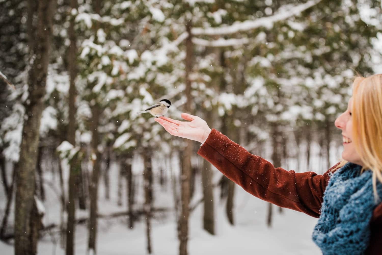 woman holds chickadee during snowfall - winter engagement in ottawa