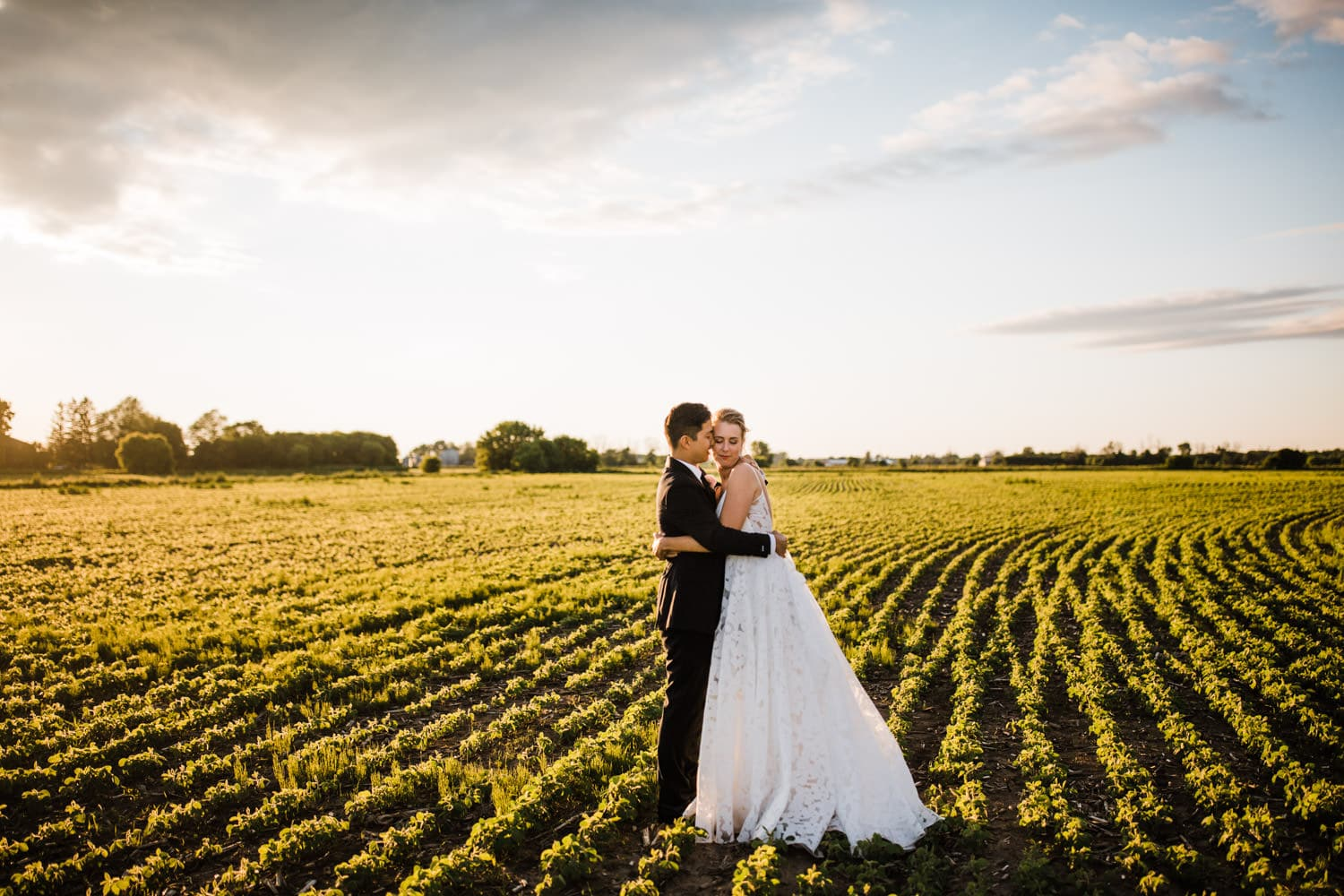 bride and groom hug in field at sunset - carley teresa photography - ottawa backyard wedding