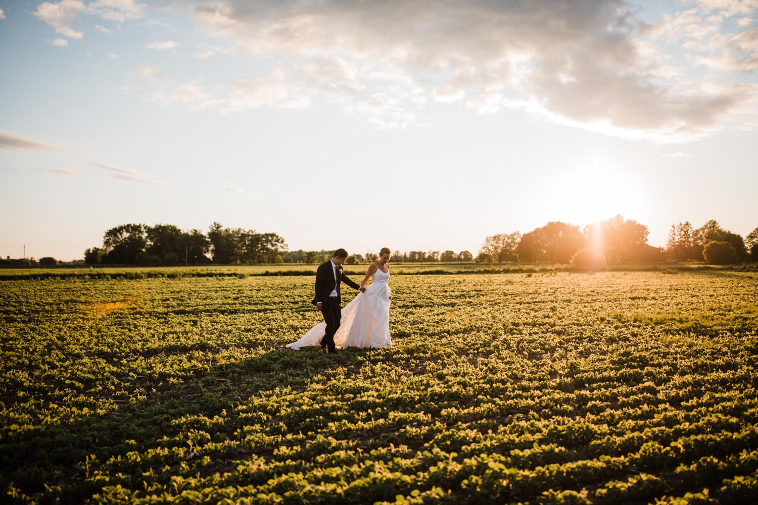 bride and groom walk through a field at sunset - ottawa backyard wedding - carley teresa photography