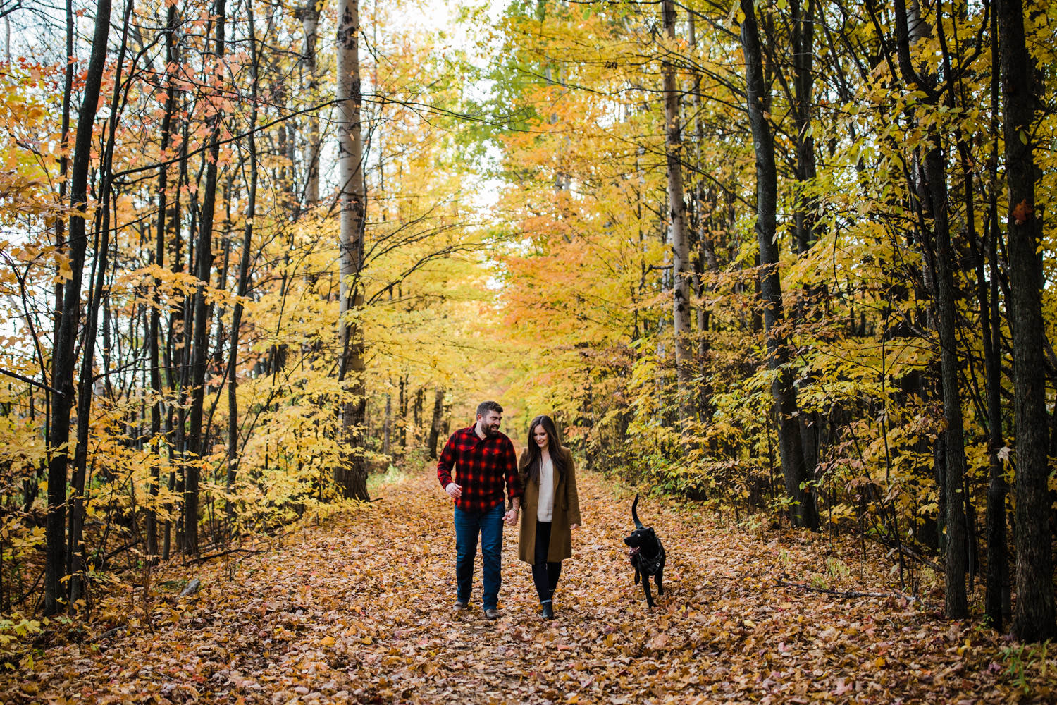 couple walk down beautiful pathway with their dog - ottawa fall engagement